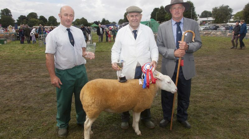Tenbury Countryside Show 2014