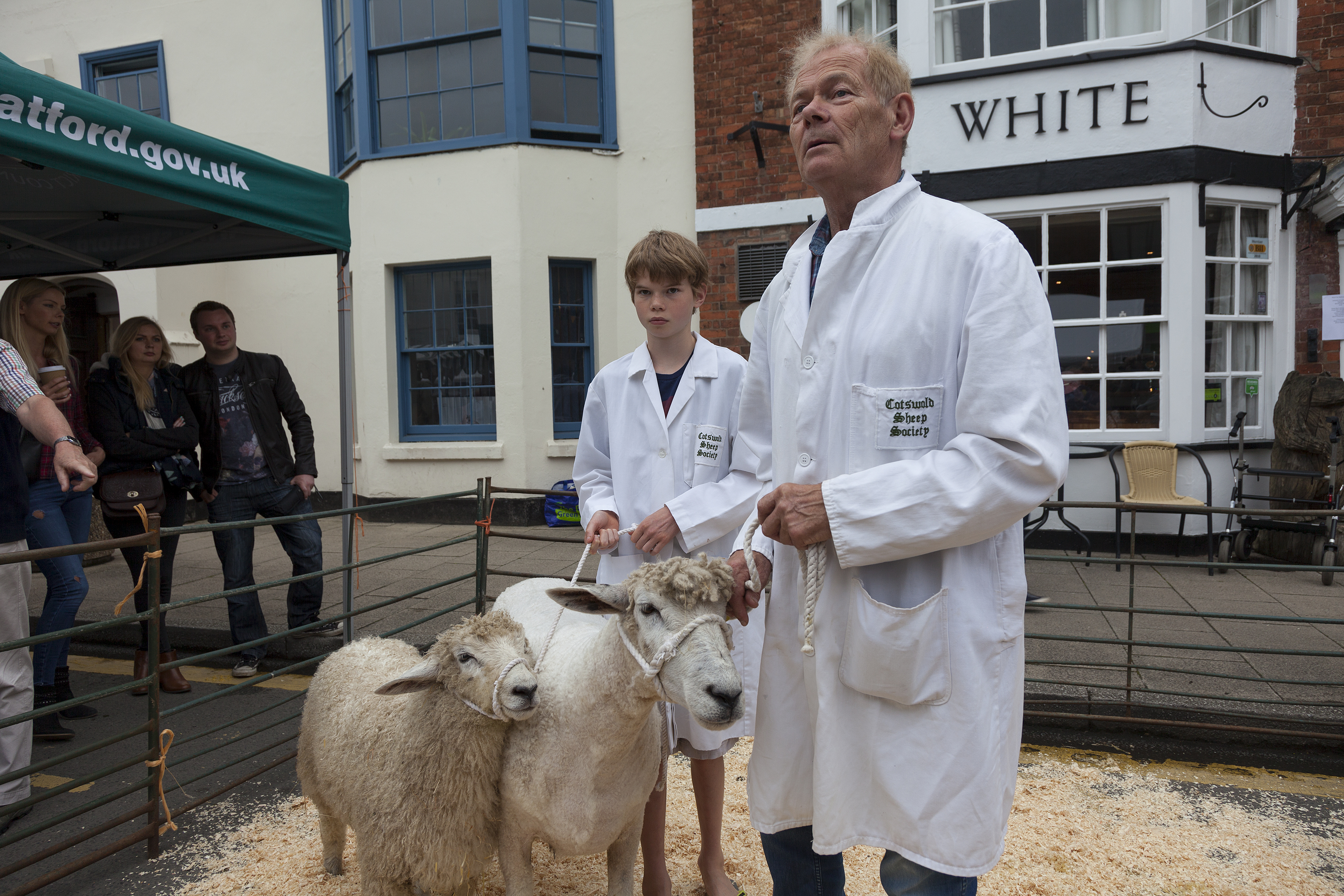 Wooly Excitement at Shipston Wool Fair - WiderView Photography